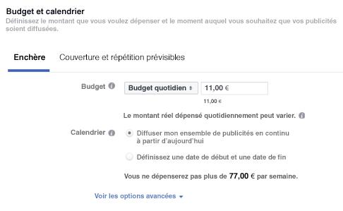 Panneau de définition des budgets et enchères Facebook Ads