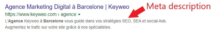 Exemple d'une meta description dans Google